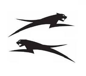 2x Arctic Cat (Left/right) Vinyl Decal Sticker Buy 2 Get 3rd Free ()