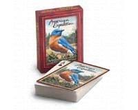American Expedition Wildlife再生カードデッキ:ブルーバード