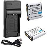 Battery (2-Pack) and USB Charger for Olympus Stylus 550WP, X-560WP, X-600, X-730, X-785, X-790, X-795 Digital Camera