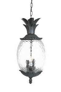 - Acclaim 7516BK Lanai Collection 3-Light Outdoor Light Fixture Hanging Lantern, Matte Black