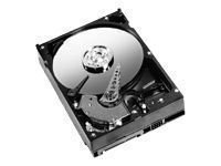 Cache 2mb Ide 7200rpm (Western Digital WD400BD 40GB Hard Drive)