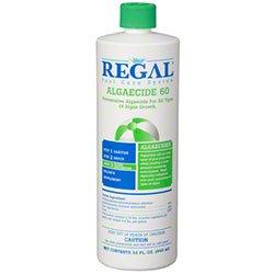 Regal Algaecide 60 for Swimming Pools & Spas by Regal