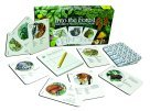 Ampersand Press Into the Forest, Nature's Food Chain Game