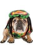 Rasta Imposta Rasta Dog Costume, XX-Large