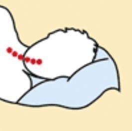 Oreiller cervical Voyage cuscinolo