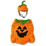 PETCO BOOTIQUE THE GREAT PUP-KIN Pumpkin DOG COSTUME (Petco Dog Costumes)
