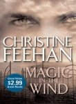 Magic in the Wind by Berkley Publishing Group