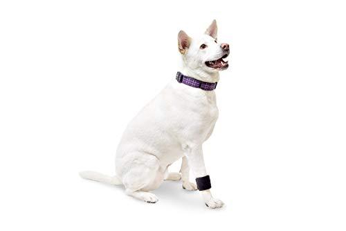 Walkin' Wrist Wrap for Dogs Front Leg Canine