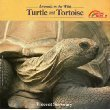 img - for Turtle and Tortoise (Animals in the Wild Series) by Vincent Serventy (1988-06-03) book / textbook / text book