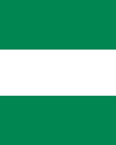 Download Flag of Nigeria Notebook: College Ruled Writer's Notebook for School, the Office, or Home! (8 x 10 inches, 120 pages) PDF
