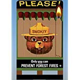 Lights4Models 88-2851 Large Smokey the Bear Billboard by Miller Signs