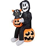 Halloween Inflatable Skeleton Reaper Holding a Pumpkin w/Black Cat Inside By Gemmy ()