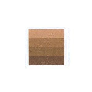 Charbonnel Aqua Wash Etching Ink - Burnt Sienna 60ml Tube 332403