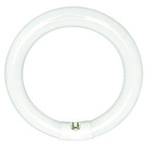 Sylvania 20059 - FC16T9/CW/RS Circular T9 Fluorescent Tub...