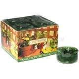 Yankee Candle GREENHOUSE Tea Lights, Box of 12