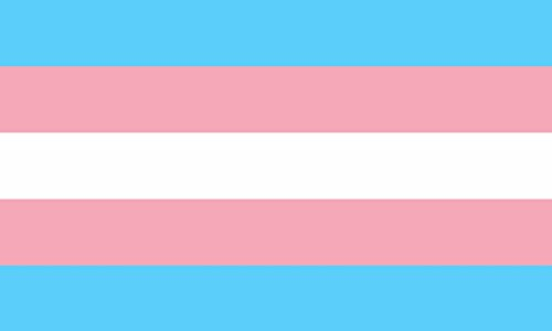 Shoe String King SSK Transgender Pride Outdoor Flag - Large