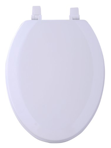 Achim Home Furnishings TOWDELWH04 19-Inch Fantasia Elongated Toilet Seat, Wood White (In Toilet Seats China Wooden)