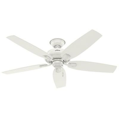 Hunter 53332 Tidewater 52 in. Outdoor Fresh White Ceiling Fan (Hunter Ceiling Fan Blade Brackets)