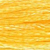 Dmc 6-Strand Embroidery Cotton 8.7yd-Medium Yellow