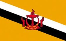 3×5′ Brunei Nylon Flag – All Weather, Durable, Outdoor Nylon Flag – All Star Flags