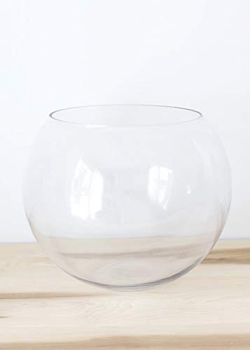 (Afloral Glass Bubble Terrarium Fish Bowl - 8