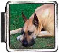Great Dane Italian Charm Bracelet Jewelry Link A10022