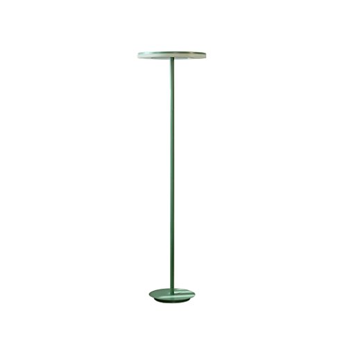 Shade Floor Acrylic Lamp (DYY Modern Wrought Iron Floor Lamp, Acrylic Lampshade, LED Lamp Beads Reading Protection Eye Study Bedroom Bedside Lamp (Color : Green))