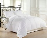 Alternative Comforter - Chezmoi Collection Heavyweight Filled Goose Down Alternative Comforter, Queen/Full, White