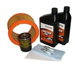 Generac Maintenance Kit for 20kw with Oil (2008-2012 Nexus Models)