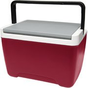 9 quart igloo cooler - 7