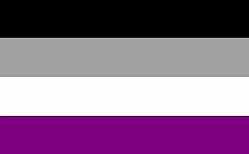 Asexual Pride Flag 5ft x 3ft Large - 100% Polyester - Metal Eyelets - Double Stitched