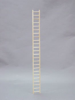 North American Pet BBO22795 Bob Parrot Ladder, 48-Inch