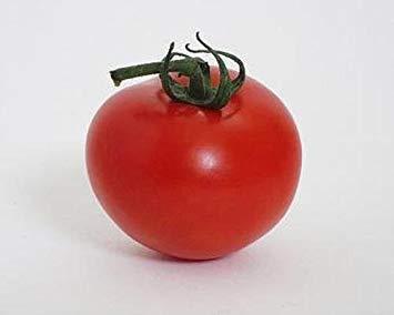 Heinz Tomato Seeds - VISA STORE Heinz 2274 Tomato Seeds