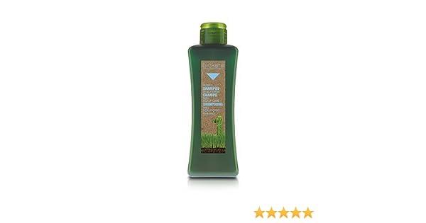 Champú Biokera Natura Scalp Care 300 ml alerm Cosmetics: Amazon.es ...