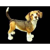 Retired Country Artists -Beagle - AB70001 - A Breed Apart
