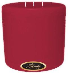 Trinity Candle工場 – French Rose – Pillar Candle – 6 x 6 B0030B6XO8