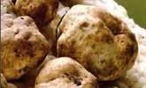Savini Tartufi Sale al Tartufo- Truffle Salt - 100 grams