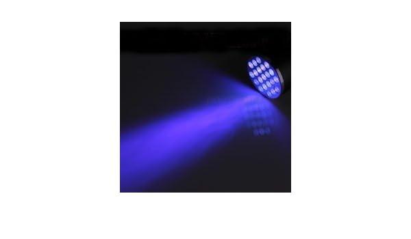 Amazon.com : Deluxe CCTV Inc. Semen Detection Cheater UV LED Flashlight : Camera & Photo