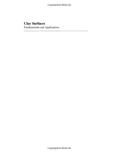 Clay Surfaces, Volume 1: Fundamentals and Applications (Interface Science and Technology) (v. 1)