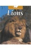 Lions (Untamed World)