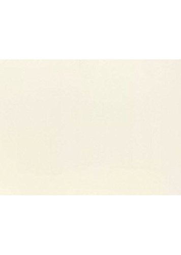 Cards Casual Correspondence (#17 Mini Flat Card (2 9/16 x 3 9/16) - Natural (250 Qty.) | Perfect for Personal Stationery, Business Correspondence, Invitation Inserts, and more! | LEVC933-250)