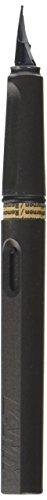 LAMY Safari Fountain Pen, Charcoal Medium Nib (L17M)