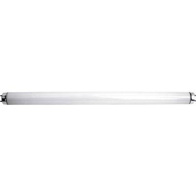 s Tube UV 20 W Perel GIK16NLAMP Culot T8 1 pc