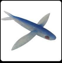 Flying Lure (Frenzy BSF-BLU Ballistic Flying Fish)