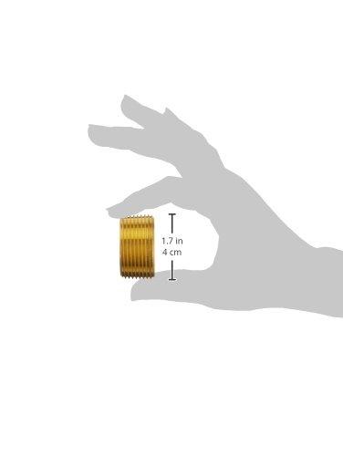 R1-1//4 Hexagon Head Male BSPT Brass Parker 0205 42 00 Plug