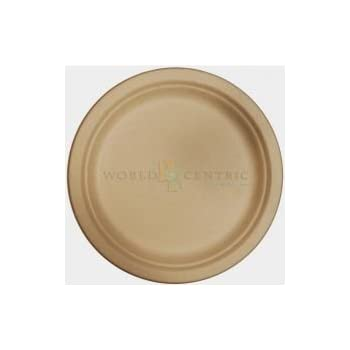 World Centricu0027s Biodegradable and Compostable Wheat Straw 9  Plates (Package of ...  sc 1 st  Amazon.com & Amazon.com: World Centricu0027s Biodegradable and Compostable Wheat ...