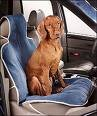 Cheap Pet Seat Cover Size: Bucket, Color: Cashew (sueded)