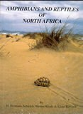 Amphibians and Reptiles of North Africa, Schleich, H. Hermann and Kastle, Werner, 3874293777