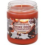 Smoke Odor Exterminator 13 oz Jar Candles Cinnamon Sprinkle, (3) Limited Edition