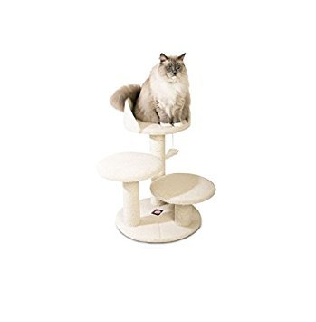 Majestic Pet Products 27 inch Cream Bungalow Cat Furniture Condo House Scratcher Multi Level Pet Activity (Best Majestic Pet Cat Trees)